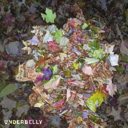 underbelly Album Cover